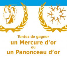 panonceau_or